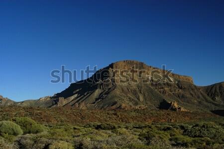 Vegetação tenerife topo paisagem azul viajar Foto stock © zittto