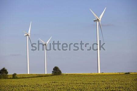 Stok fotoğraf: çiftlik · kuzey · Fransa · teknoloji · yeşil · sanayi