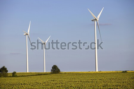 windturbines Stock photo © zittto