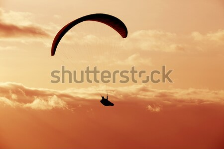 Paragliding Stock photo © zittto