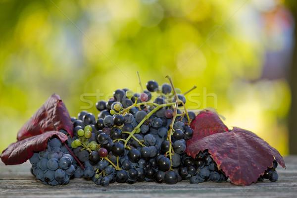 üzüm açık üzüm ahşap masa bahçe şarap Stok fotoğraf © zittto