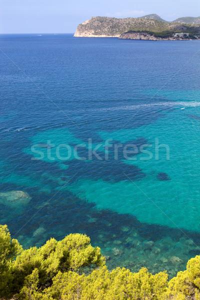 mallorca Stock photo © zittto