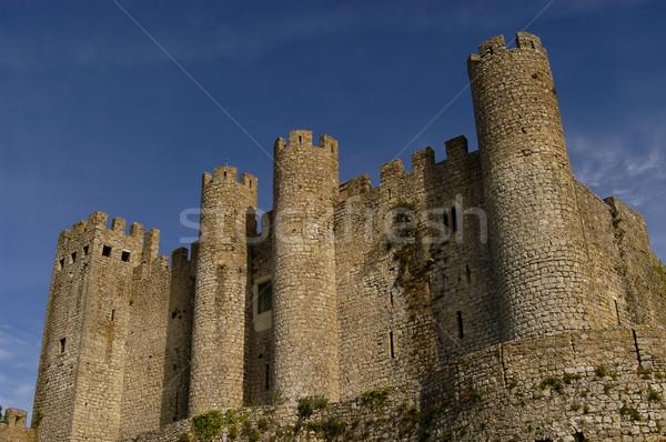 castle Stock photo © zittto