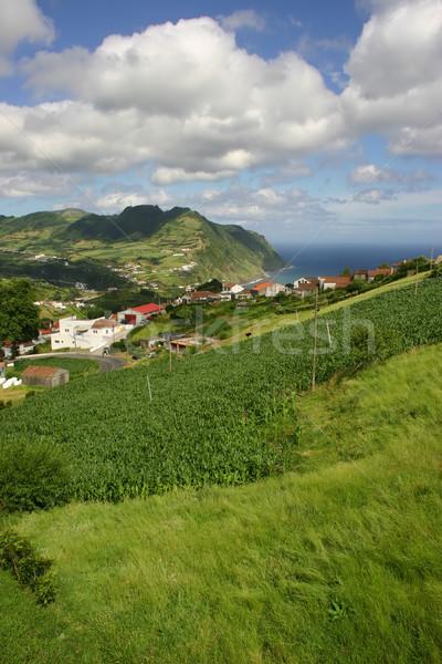 Aldeia água estrada paisagem verde igreja Foto stock © zittto
