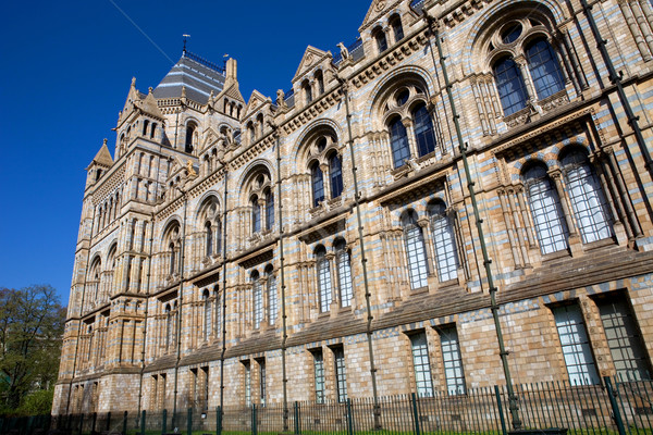 Museum natuurlijke geschiedenis Londen Engeland gebouw Stockfoto © zittto