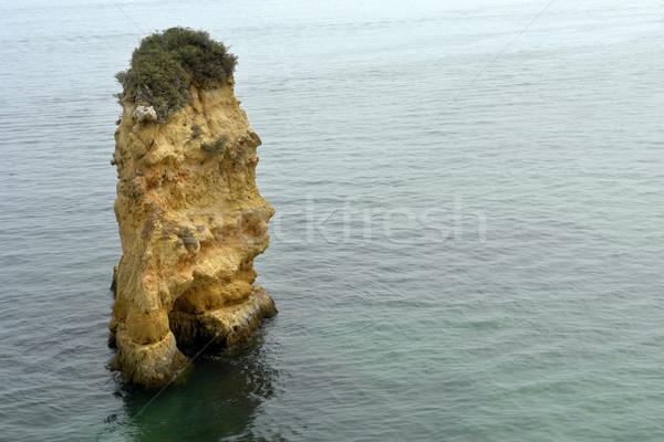 rock Stock photo © zittto