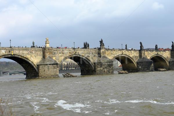 Prag eski köprü şehir su ağaç Stok fotoğraf © zittto