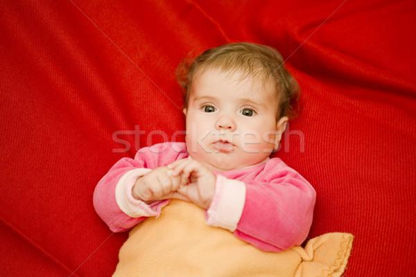 Jovem bebê retrato estúdio quadro menina Foto stock © zittto