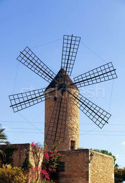 windmill Stock photo © zittto