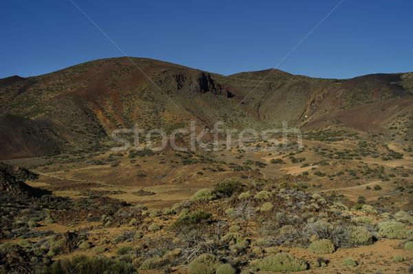 Tenerife landschap Blauw reizen panorama mooie Stockfoto © zittto
