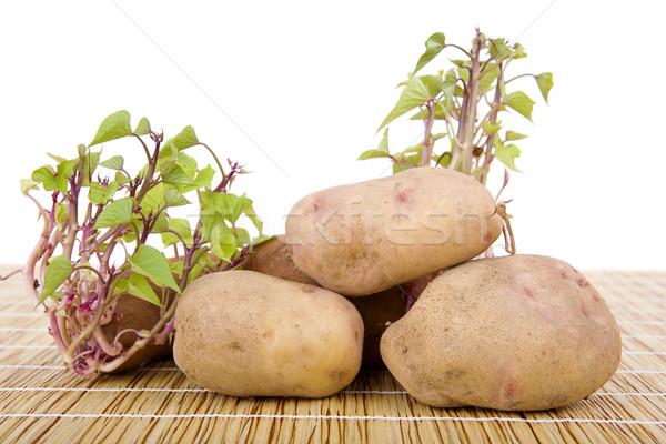 Stockfoto: Keukentafel · voedsel · tabel · groene · jonge