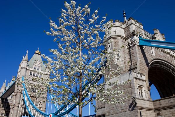 Tower Bridge detay Londra İngiltere gökyüzü Bina Stok fotoğraf © zittto