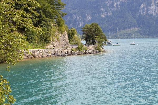 Сток-фото: озеро · альпийский · регион · воды · дерево · весны