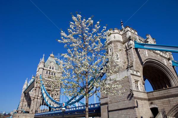 Tower Bridge detalle Londres Inglaterra ciudad construcción Foto stock © zittto