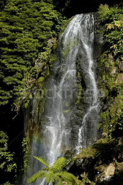 waterfall Stock photo © zittto