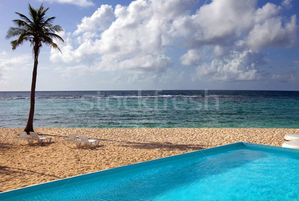 úszómedence tengerpart part Mexikó égbolt fa Stock fotó © zittto