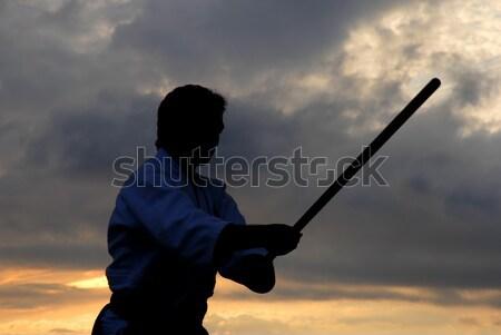 Aikido siluet sopa gün batımı spor Stok fotoğraf © zittto