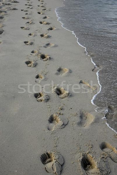 footprints Stock photo © zittto