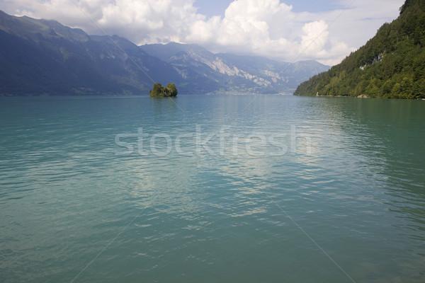 Сток-фото: озеро · острове · небольшой · воды · дерево · весны