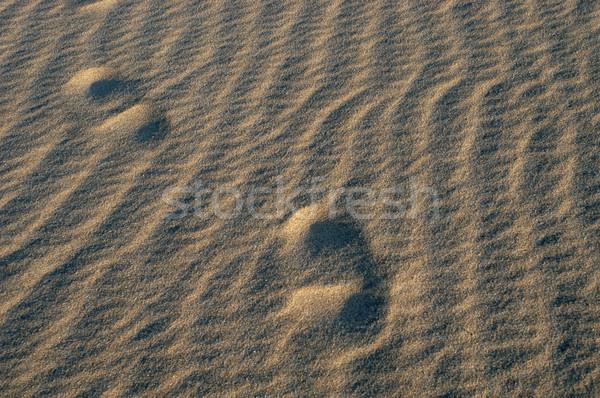 песок следов человека природы здоровья путешествия Сток-фото © zittto