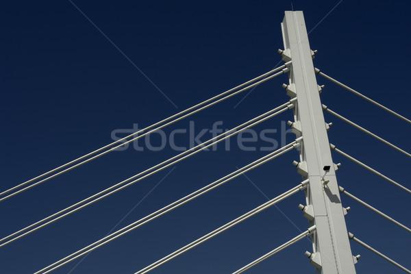 lines Stock photo © zittto