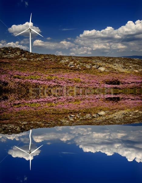power Stock photo © zittto