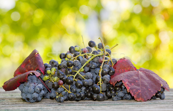 grapes outdoor Stock photo © zittto