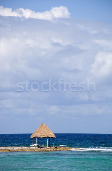 oceans Stock photo © zittto