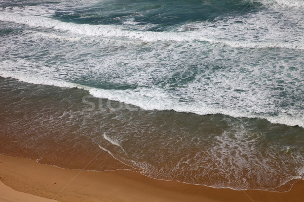 beach at algarve Stock photo © zittto
