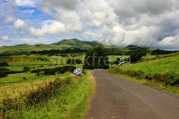 landscape Stock photo © zittto