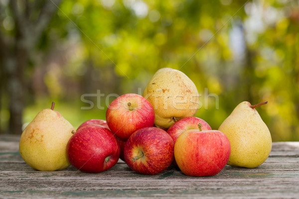 apples and pears Stock photo © zittto