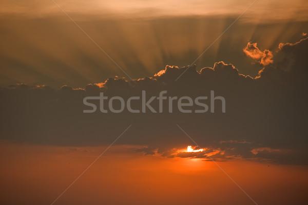 sunrays Stock photo © zittto