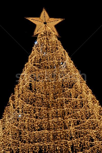 christmas Stock photo © zittto