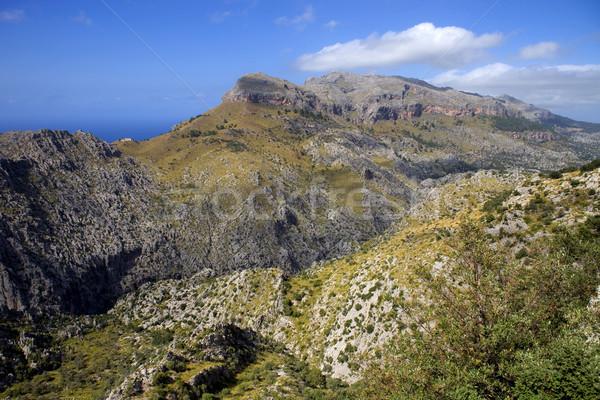 Majorca bergen berg noorden eiland Stockfoto © zittto