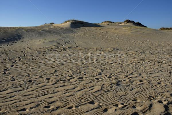 Sahara woestijn zand blauwe hemel abstract zonsondergang Stockfoto © zittto