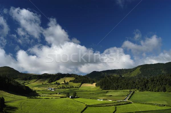 land Stock photo © zittto