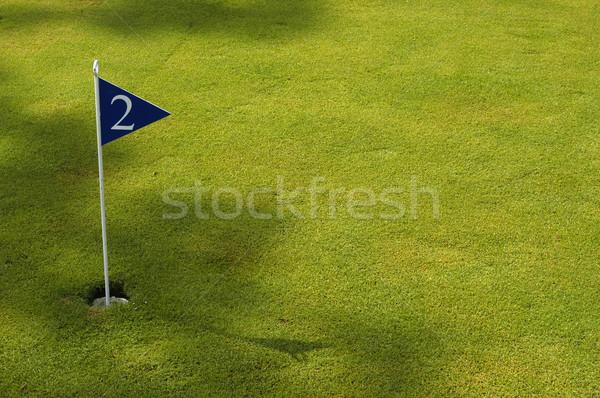ゴルフ フィールド 詳細 スポーツ 木 緑 ストックフォト © zittto