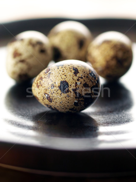 quail eggs Stock photo © zkruger