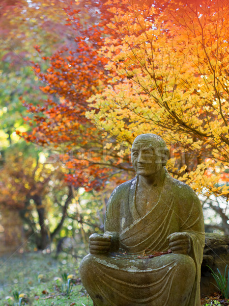 buddhist garden in autumn Stock photo © zkruger