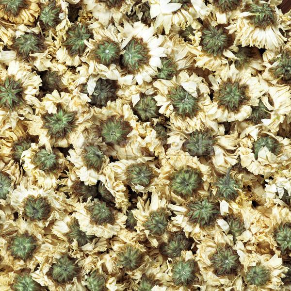 Foto stock: Crisantemo · flor · té · alimentos