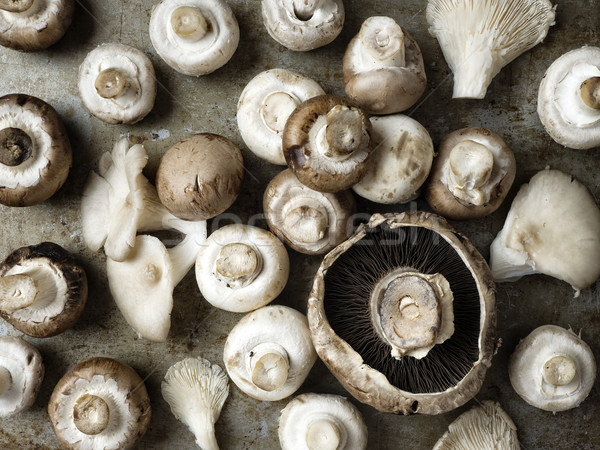 rustic uncooked assorted edible mushrooms Stock photo © zkruger