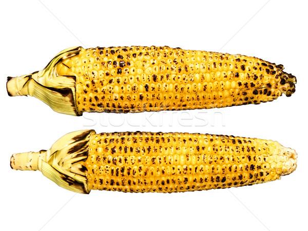 roasted corncob isolated Stock photo © zkruger
