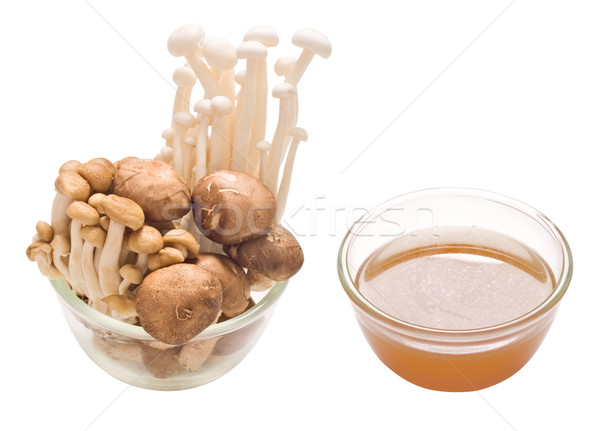 assorted mushroom and stock isolated Stock photo © zkruger