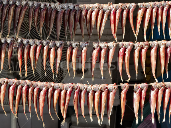 fish hung up to dry for preservation Stock photo © zkruger