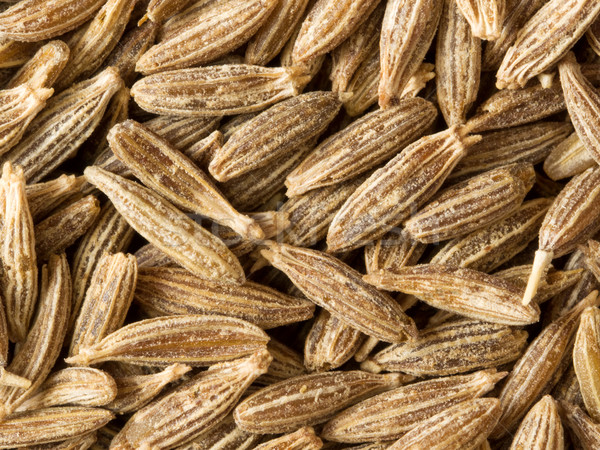 cumin seed food background Stock photo © zkruger