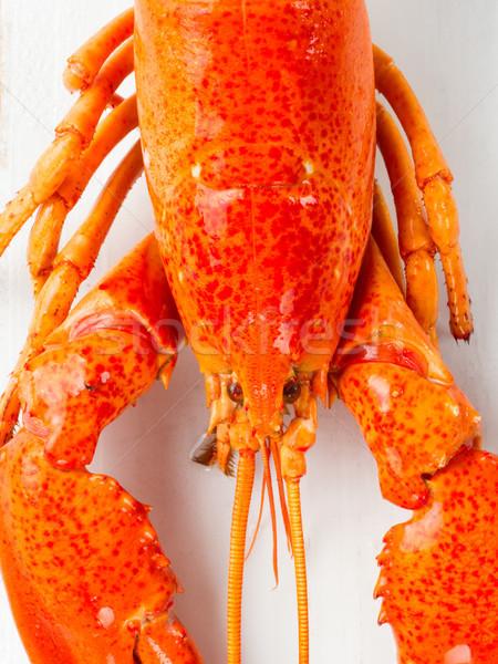Rustykalny gotowany gotowany czerwony homara Zdjęcia stock © zkruger