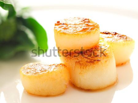 pan seared sea scallops Stock photo © zkruger