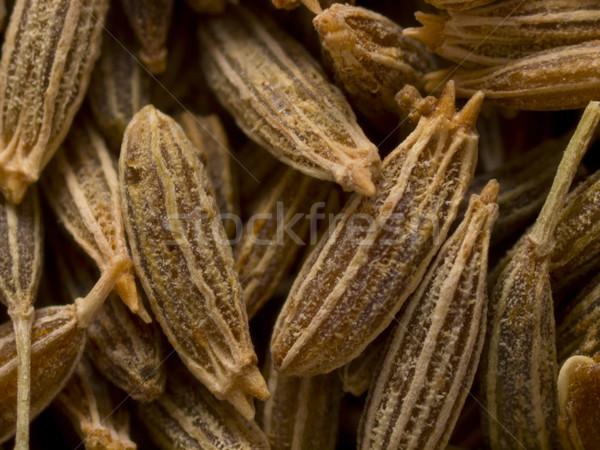 Komijn zaden voedsel achtergrond witte Stockfoto © zkruger