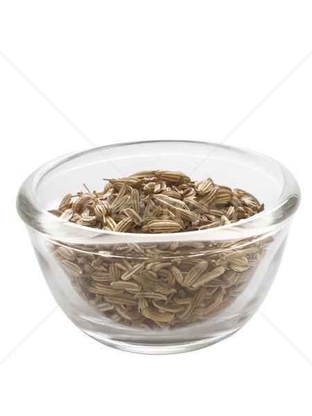 Koper nasion puchar odizolowany tle Zdjęcia stock © zkruger