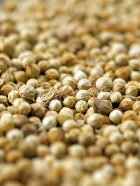 Kişniş tohumları renk makro baharat Stok fotoğraf © zkruger
